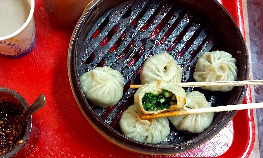Field Guide to Tibetan Momos of Queens